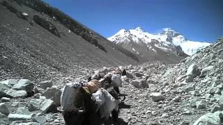 Bill Burke 2012 Mt. Everest Video
