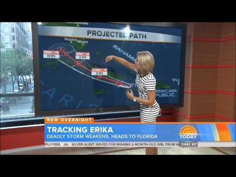 Dylan Dreyer (The Today Show)