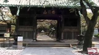 祐天寺・岡千仭墓所