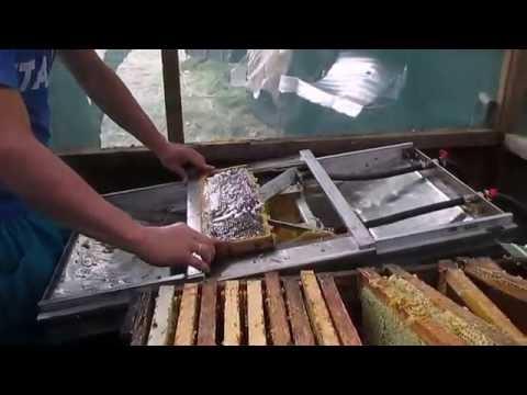 Откачка меда Испытание станка по распечатке рамок Extracting Honey