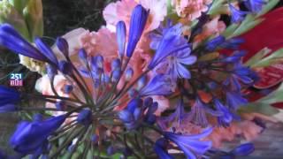 150828 Dank voor de bloemen