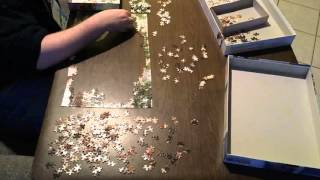 Jigsaw Puzzle Time Lapse: Unknown picture of puppies (500 pieces) by unknown manufacturer