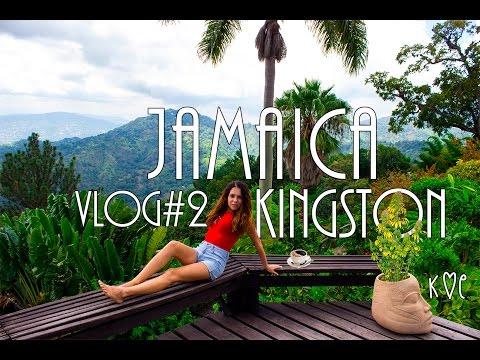 The best Jamaican coffee   Blue Mountain, Kingston & Bob Marley museum 2016 4K