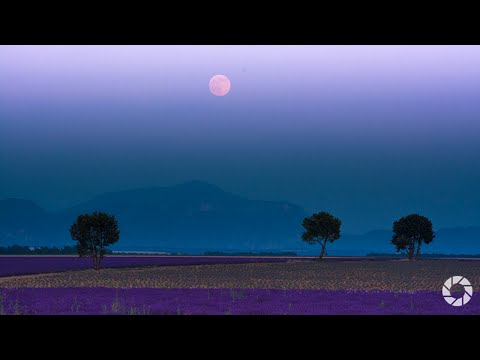 Full Moon : You Keep Shooting with Bryan Peterson