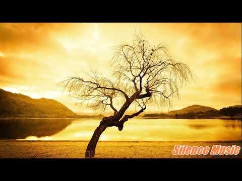 Bismillah Islamic Ringtone Mp3 Free Download - IslamicHub