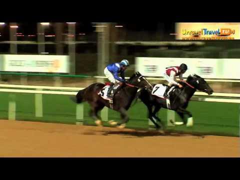Horse Racing, The Nad Al Sheba Racecourse, Dubai, The United Arab Emirates - Unravel Travel TV