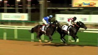 Horse Racing, The Nad Al Sheba Racecourse, Dubai, The United Arab Emirates - Unravel Travel TV