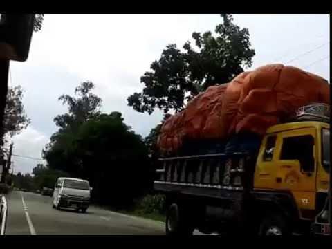 Bogra sherpur rod
