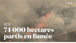 Les incendies ravagent Fraser Island, île australienne classée à l'Unesco