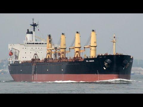 SEA ARROW - Phoenix Bulk Carriers bulk carrier