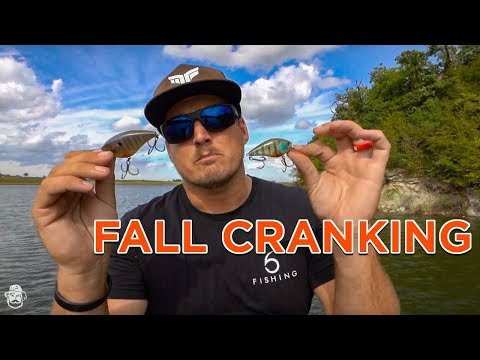 Fall Crankbait Fishing Tips Catch Transitioning Bass On Reaction Baits