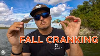 Fall Crankbait Fishing Tips | Catch Transitioning Bass On Reaction Baits