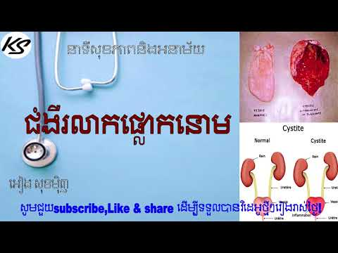 What is cystitis? - cambodia health care - komsan Sabay