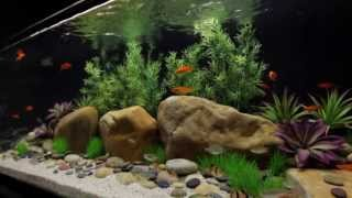 Satellite Plus Freshwater Flexible Led Aquarium Light Strip With Wireless Control