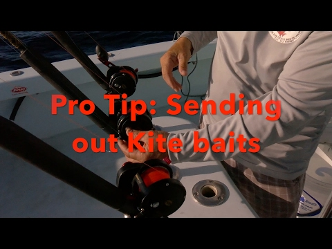 How-To: Set Out Kite Baits