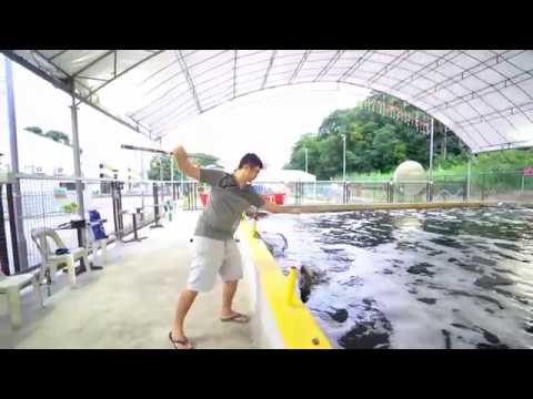 Having FUN At 125 Pasir Ris FISHING! (Singapore Fishing Paypond)