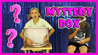 MYSTERY BOX CHALLENGE | We Are The Davises