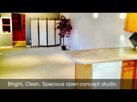 Bright and Clean! 534 1/2 St Jean-Baptiste - Spacious Studio!