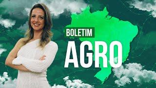 Boletim Agro - Excesso de umidade atrapalha trabalhos em campo na região Sul.