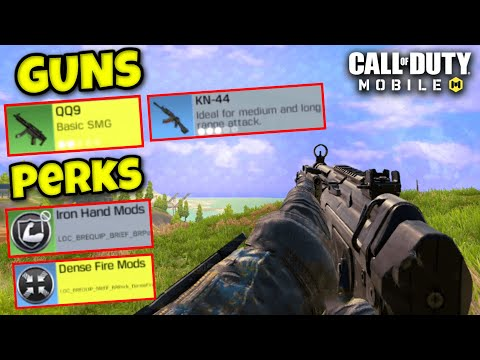Call Of Duty Mobile Upcoming Season 9 Update Comprises Of New Ammos Qq9 And Kn44 Animationxpress