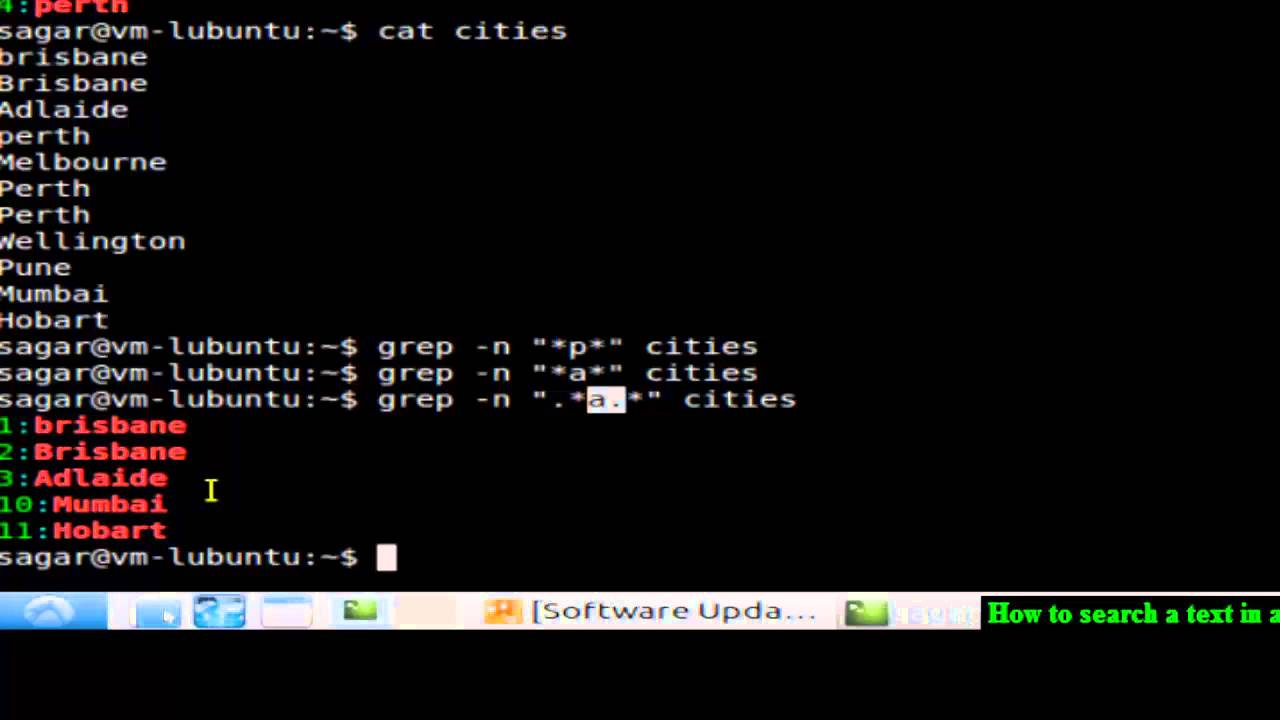 linux find files by name