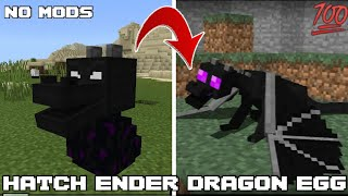 How to HATCH Ender Dragon Egg??? ..... simple and effective method..... 100% working every time screenshot 3
