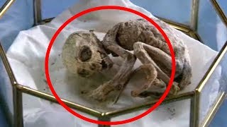 5 Strangest Things Found In Barns!