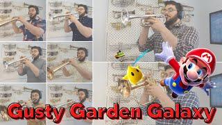 """Gusty Garden Galaxy"" - Mahito Yokota (Super Mario Galaxy)"