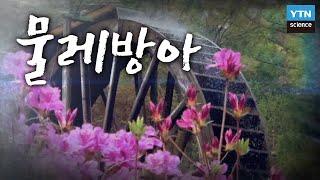 농업혁명의 씨앗, 물레방아 / YTN 사이언스