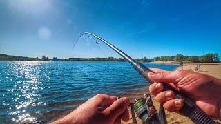 Рыбалка ОГОНЬ!!! Крупный карась не давал покоя! Рыбалка 2019 на фидер.
