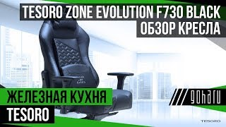 Обзор кресла Tesoro Zone Evolution F730 Black