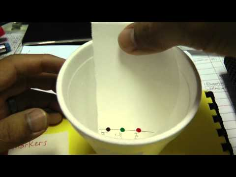 Simple paper chromatography