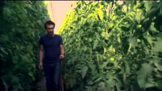 Documental de la BBC (sub. español)