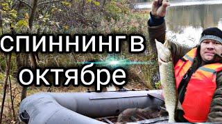 Жор хищника осенью рыбалка на щуку ловля на спиннинг в октябре
