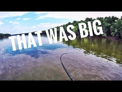 Upper Potomac SMALLMOUTH And LARGEMOUTH At Riley's Lock!