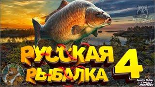 Стрим Форумный Турнир на Карпа Русская Рыбалка 4 топ игра Русский Медведь