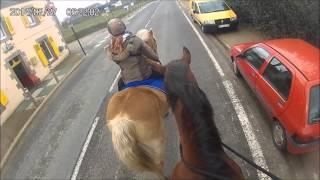 Embarquez sur le dos des chevaux ! En balade...