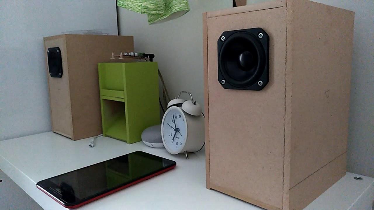 Peerless 3 Inch Full Range Speaker with Transmission Line Enclosure