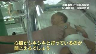 20111218c福島第一原発20km圏内の光景『特命報道記者X 2011』