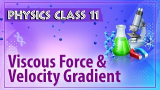 Viscous Force And Velocity Gradient - Friction - Physics Class 11 - HSC - CBSE - IIT JEE - NEET