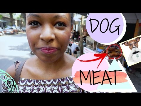 """""""They"""" Eat Dogs! 