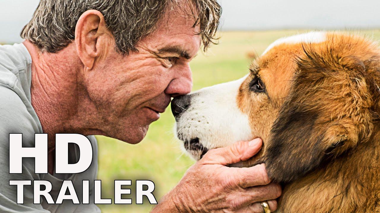 Bailey Ein Freund Fürs Leben Ganzer Film Deutsch