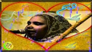 DIMI MINT ABBA tebra3 music mauritania