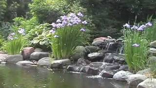 Ponds and Waterfalls- Meadows Farms Landscaping