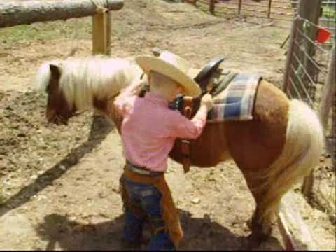 Child Safe Pony For Sale Youtube