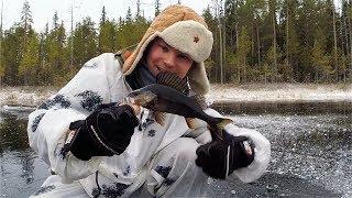 ПЕРВЫЙ ЛЕД 2018 - 2019!!! Рыбалка на жерлицы по первому льду!!! Ловля щуки по первому льду.