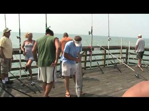 Wesleys 29 lb king cp fun music videos for Seaview fishing pier facebook