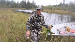 2016 Archery Moose Hunt