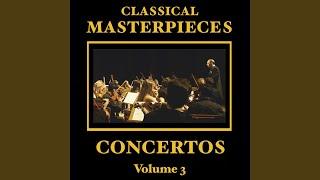 Violin Concerto In E Minor: Allegro Non Troppo - Allegro Molto Vivace