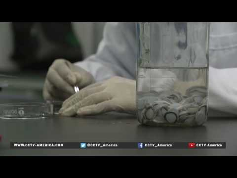 Hospital innovates bio-engineered-cornea transplants using pig tissue